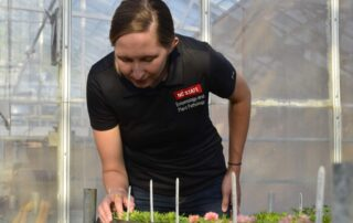 Lindsey Becker looking at seedlings in her experiment.